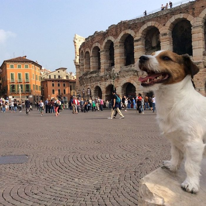Julius Monkkius! Verona, Italy