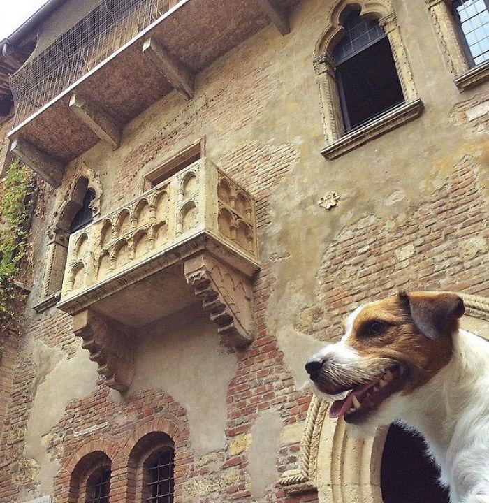 O Miss. Traveller, Miss. Traveller! Wherefore Art Thou Miss. Traveller? Verona Italy, Mr.traveller Checking Juliet's Balcony…