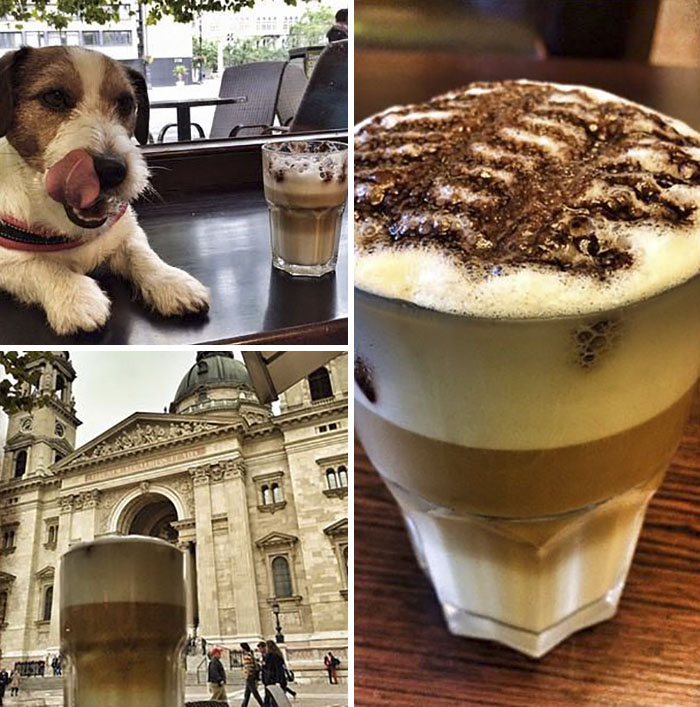 Latte Brake. Budapest, Hungary
