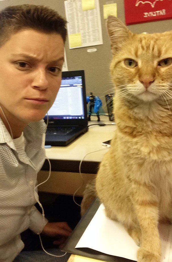 Selfie With Tom, The Office Cat
