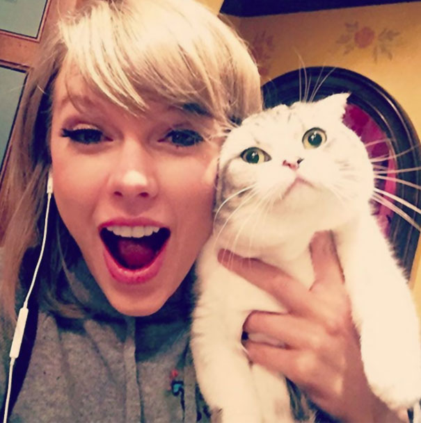 Meredith Is Allergic To Joy