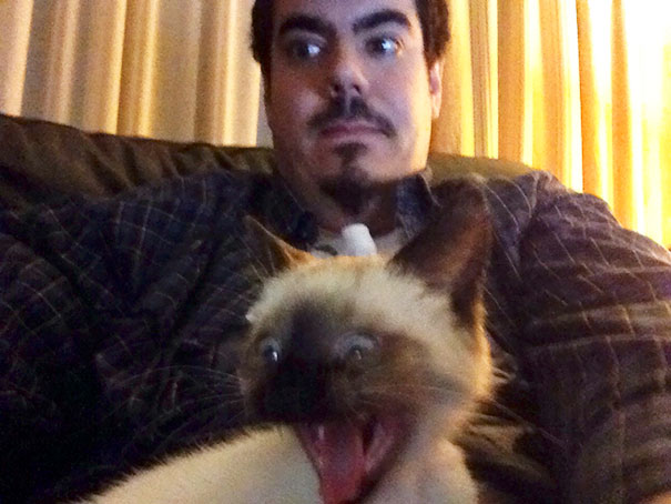 I Tried To Take A Selfie With My Cat... Hilarity Ensued