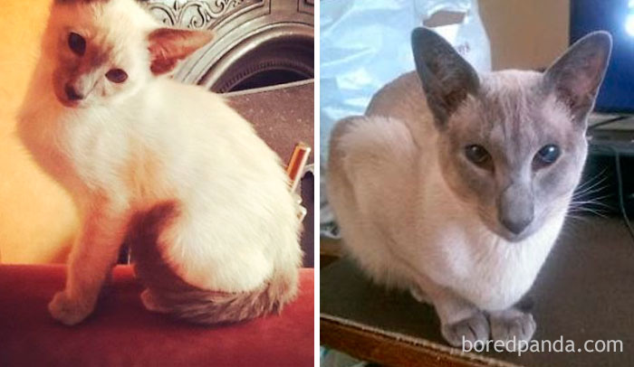 Freya – Then And Now