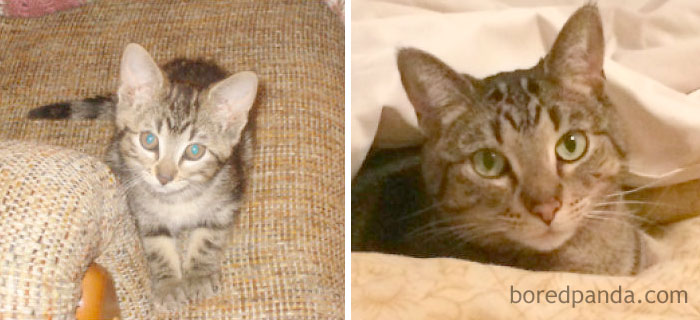 Dorie, Then And Now