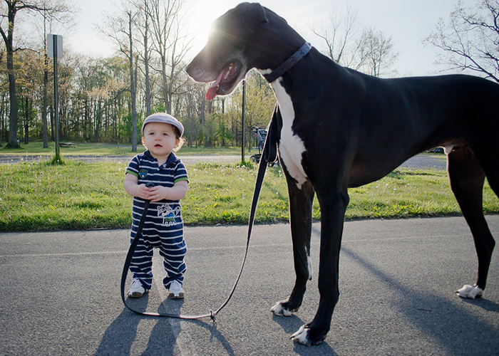 Little Boy With His Friend@@@