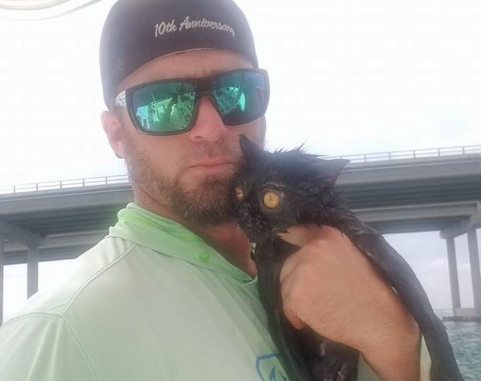 Somebody Apparently Threw This Cat Off The Bridge, But Luckily This Boat Captain Spotted Her