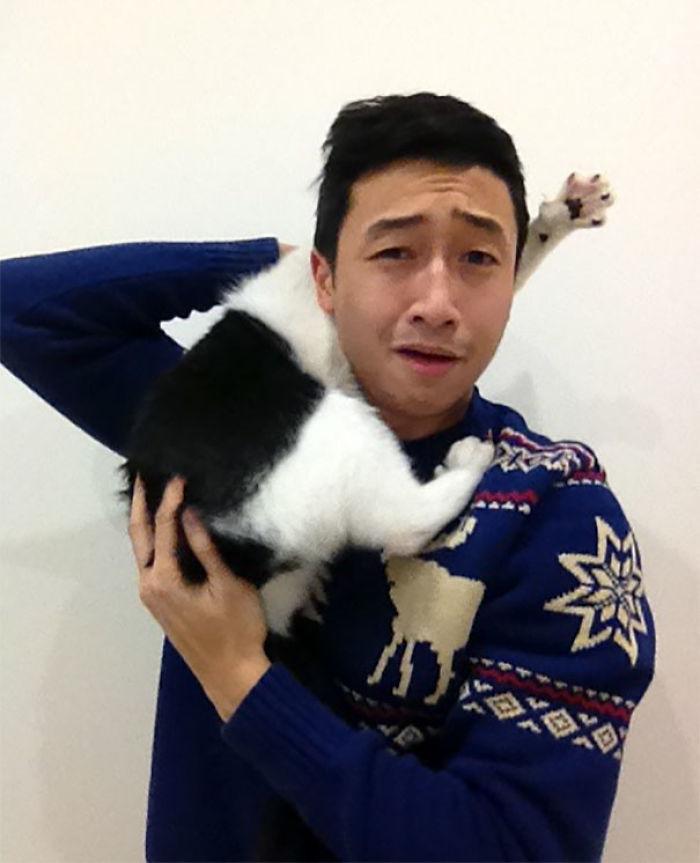 Foto navideña con el gato
