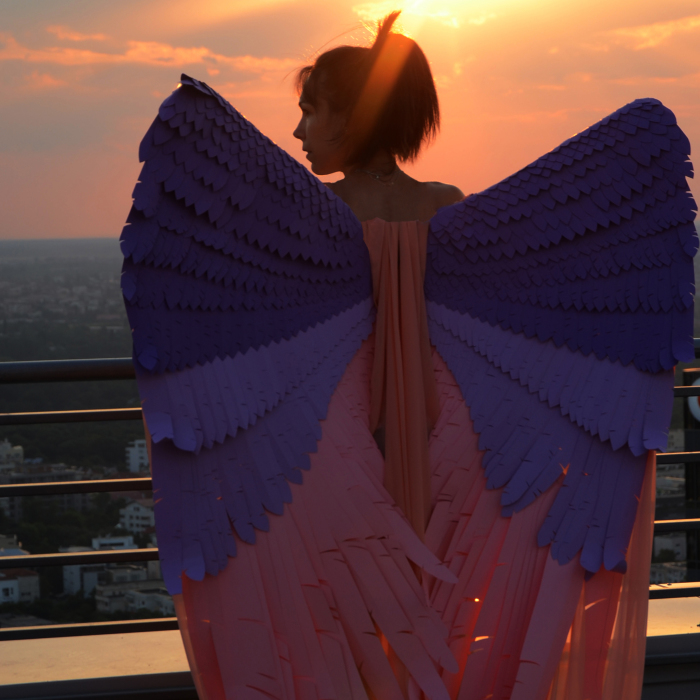 Paper Wings That I Made