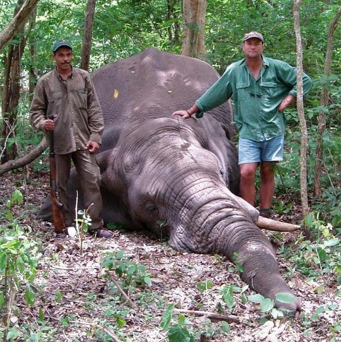 elephant-crushes-big-game-hunter-dies-jose-monzalvez-namibia-28