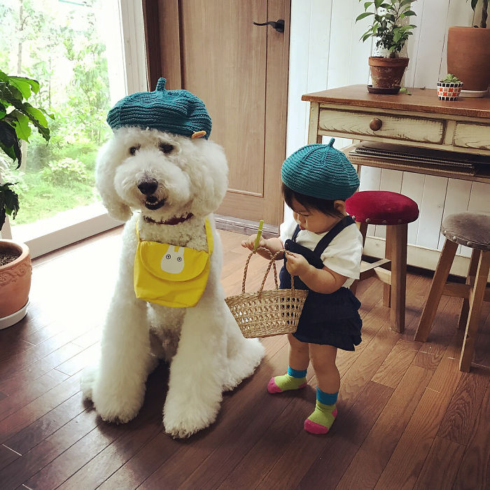 Ճապոնացի երեխայի և շան ընկերության մասին լուսանկարները մեծ տարածում են գտել համացանցում (ֆոտոշարք)