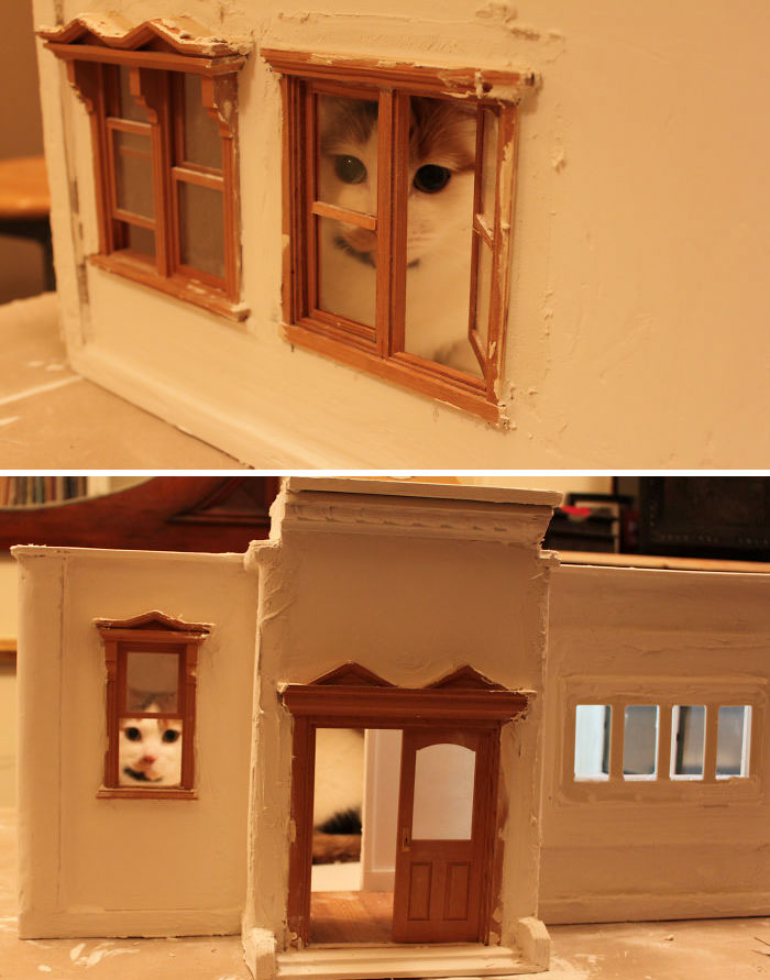 School House Kitty