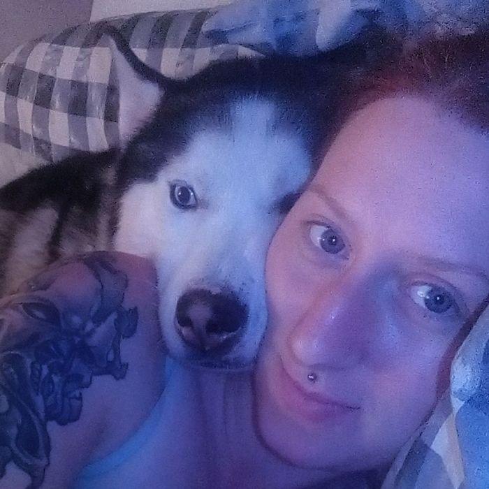 My Siberian Husky Kai Snuggling At Bedtime