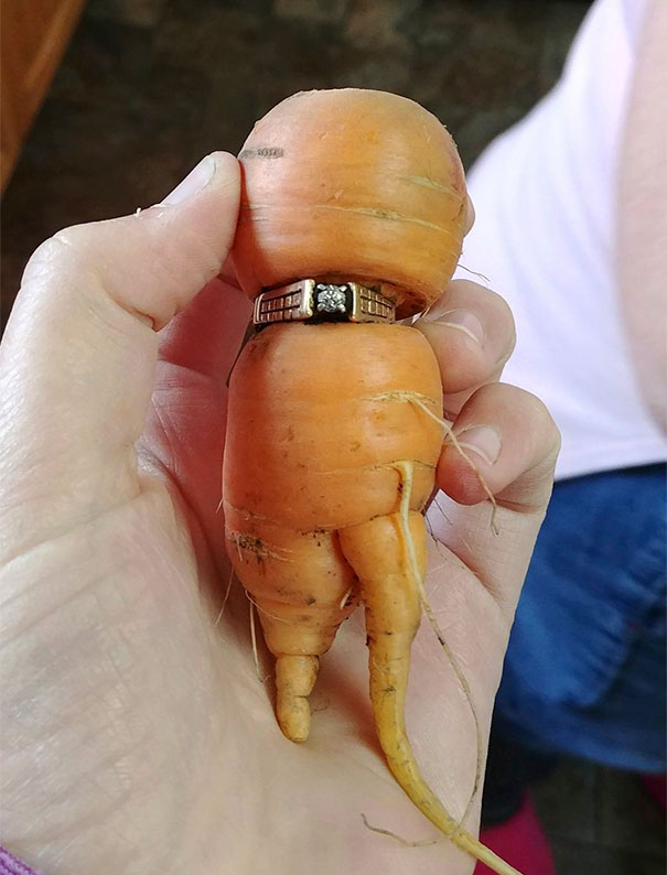 Woman Got An Extra Carrot With Her Diamond Ring When It Was Found In Her Vegetable Patch 13 Years After She Lost It