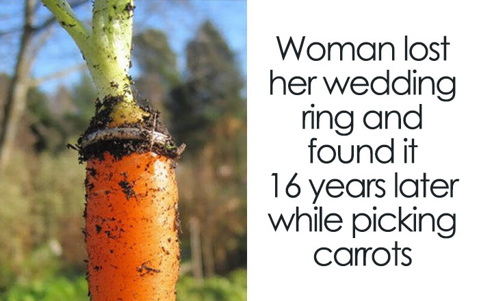 30+ Unbelievable Stories Of People Finding Things They Thought They Lost Forever