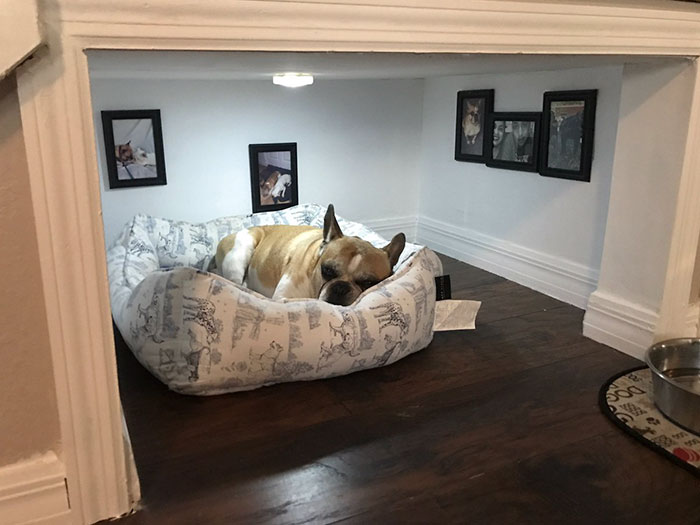 man builds entire bedroom under stairs for his dog bored panda. Black Bedroom Furniture Sets. Home Design Ideas