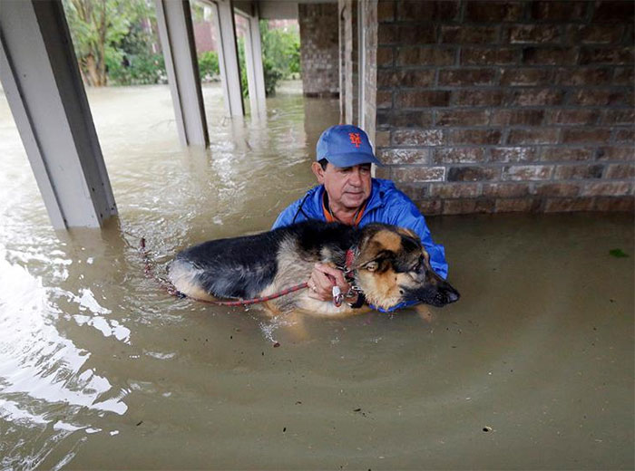 Joe Garcia Carries His Dog Heidi From His Flooded Home