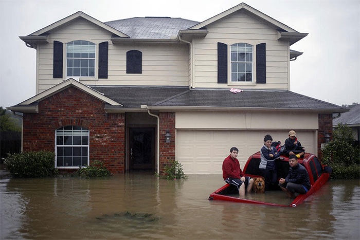 Residents With A Dog Sit In The Back Of A Truck While Waiting To Be Rescued From Rising Floodwaters In Spring, Texas