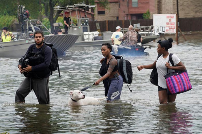 People Walk Through Water To A Staging Area To Evacuate In Dickinson, Texas