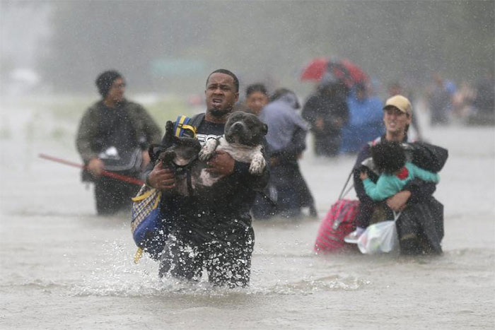 Isiah Courtney Carries His Dog Bruce Through Flood Waters In Beaumont Place, Houston, Texas
