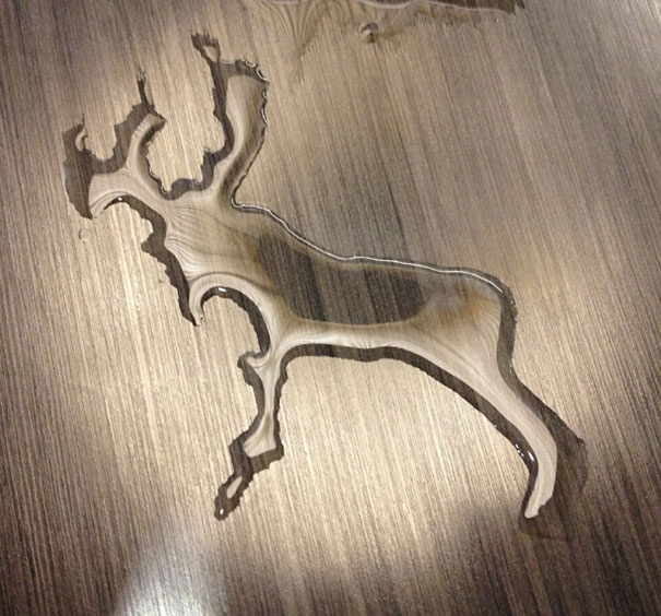 The Water I Spilled Looks Like A Reindeer