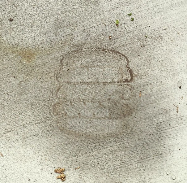 Tire Track Through A Dried Puddle Looks Like A Hamburger
