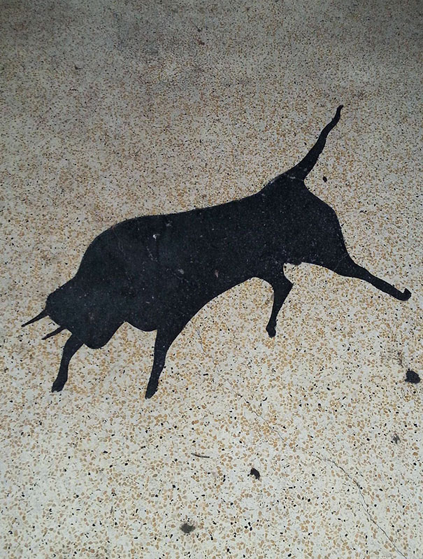 Oil Spill Looks Like A Bull