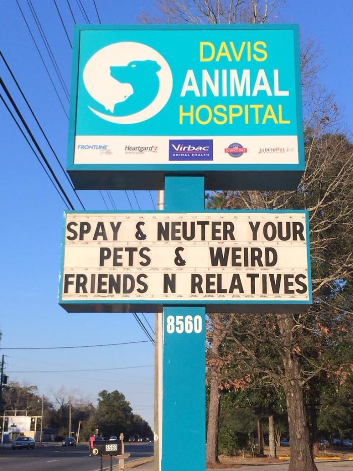 Funny-veterinarian-signs
