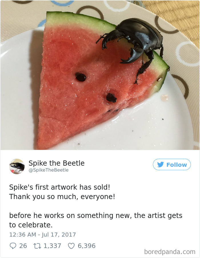 Drawing-bug-spike-the-beetle-japan