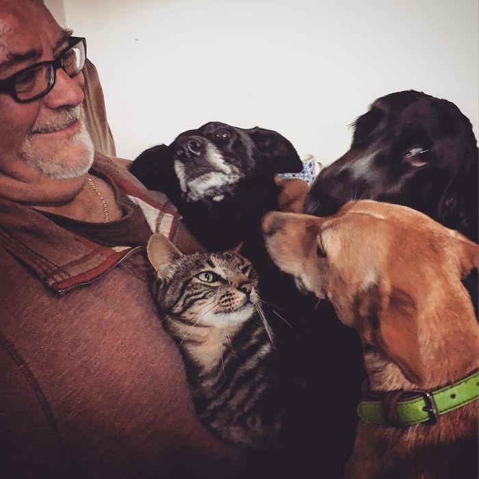 Dog And Cat Whisperer