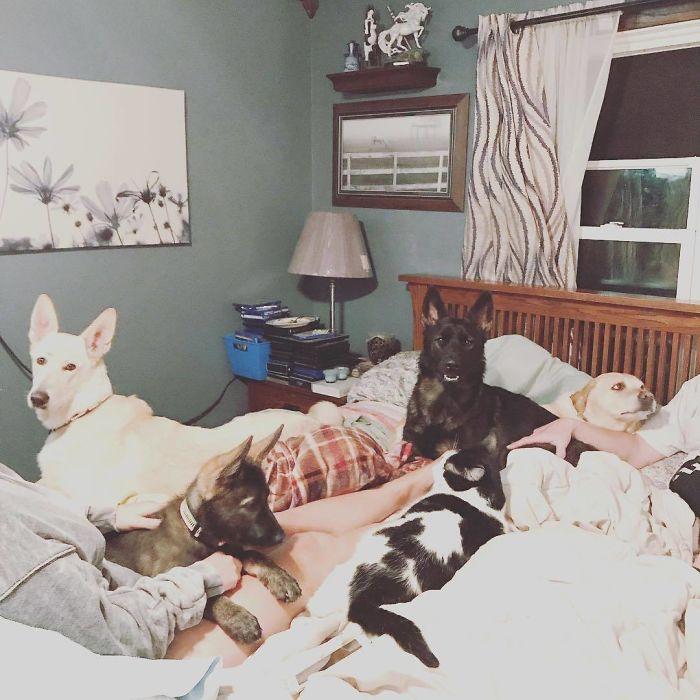 Necesitamos una cama más grande