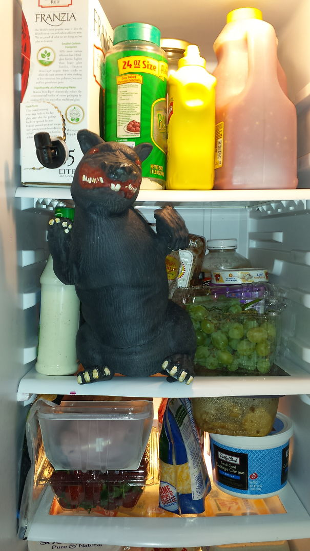 Fridge-Rat-59b824c7ee650.jpg