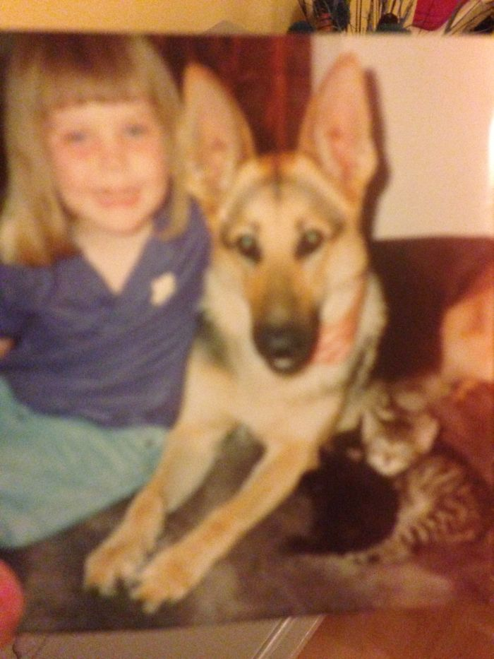 """A Little Blurry As It's 24 Years Ago… But This Is Kelly The German Shepherd With Her """"litter"""", Me, And Kittens Tammy, Toby & Charlie. She Was A Very Good Mummy! 💗"""