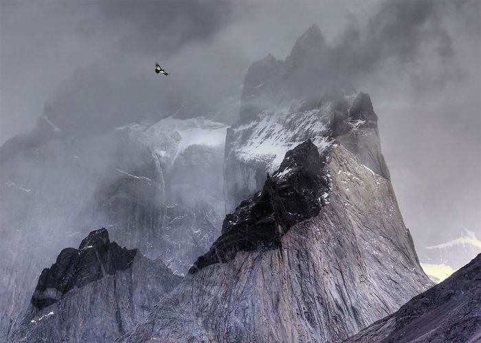 Andean Condor In Flight Over Mountain Peaks By Ben Hall, Uk. Gold Award Winner In The Birds In The Environment Category