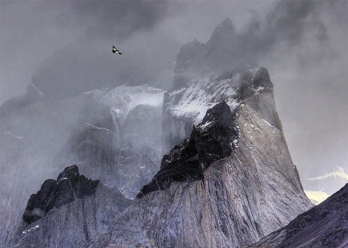 Cóndor Andino En Vuelo Sobre Las Cumbres De Las Montañas Por Ben Hall, Reino Unido. Ganador Del Oro En La Categoría Pájaros En El Ambiente