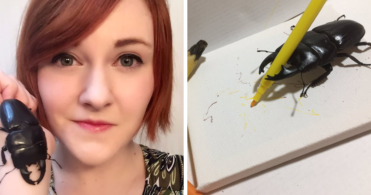 Woman Has Stag Beetle As A Pet And Her Tweets Will Make Your