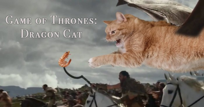 Dragon Kitty: A Cat Re-Enacted Drogon's Performance In Game Of