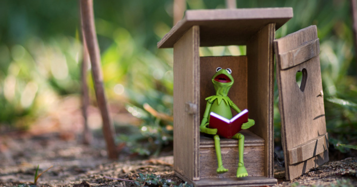 I Photograph Kermit The Frog Having Crazy Adventures