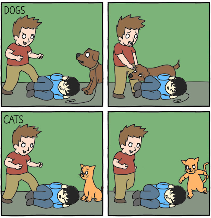 10+ Hilarious Differences Between Cats And Dogs