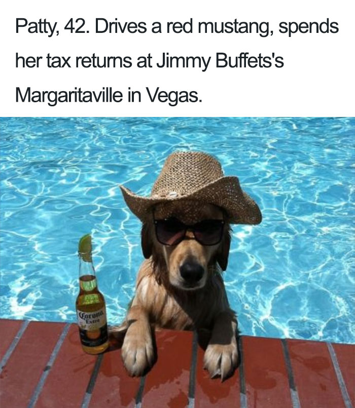 Funny Dog Bios