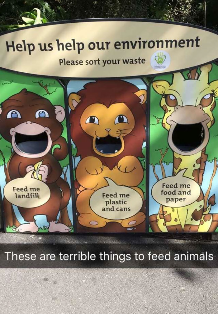 Teaching Kids Terrible Things At Wellington Zoo