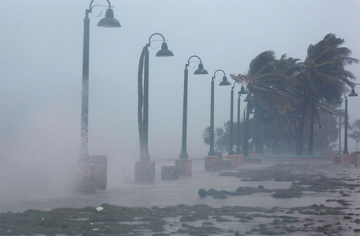 Palm Trees Buckle Under Winds And Rain As Hurricane Irma Slammed Across Islands In The Northern Caribbean In Fajardo, Puerto Rico