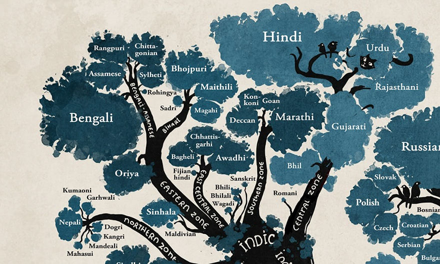 illustrated-linguistic-tree-languages-minna-sundberg-1