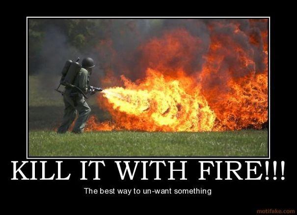 kill-it-with-fire-demotivational-poster-1235695993-59b9960c53772.jpg