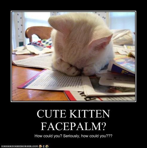 kittyfacepalm-59adf0aa38c01.jpg