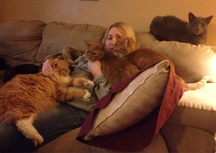 Mi madre va en camino de ser una loca de los gatos