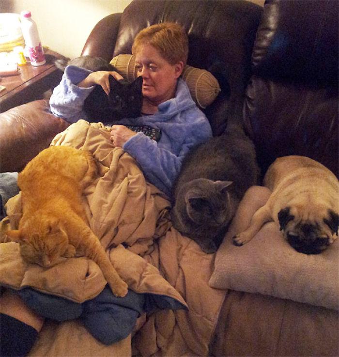 Acaban de operar a mi madre y sus mascotas le dan su confort