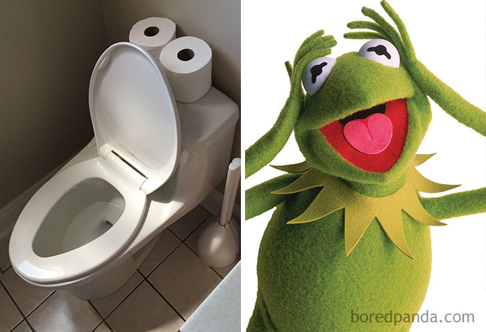 Kermit The Flush