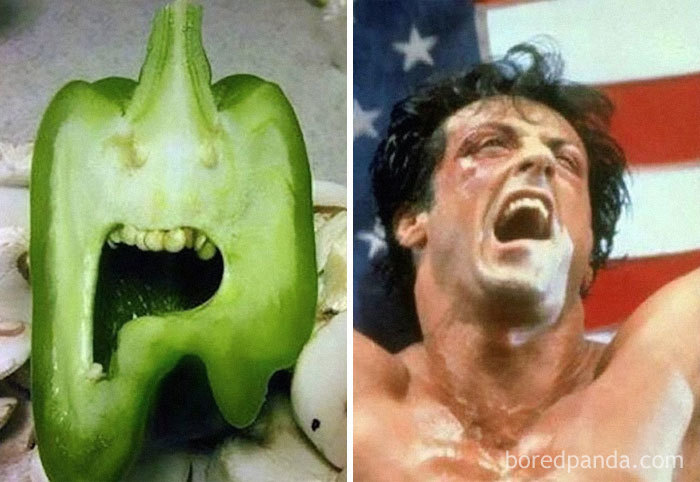 Pimiento con cara de Sylvester Stallone