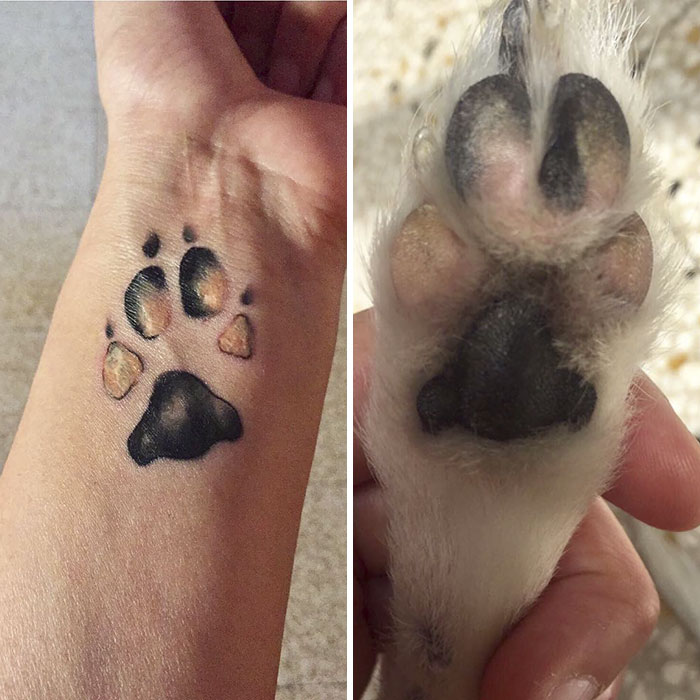 Cat And Dog Together Tattoo