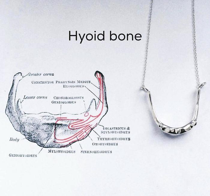 Tangue Bone